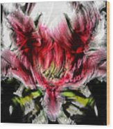 Textured Lily Wood Print