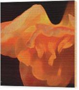 Textured Orange Wood Print