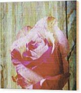 Textured Pink Red Rose Wood Print