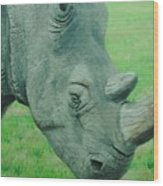 Textured Rhino Wood Print