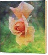 Textured Rose 3 Wood Print