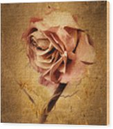 Textured Rose Wood Print