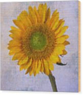 Textured Sunflower Wood Print
