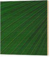 Texturized Palm Leaf Wood Print