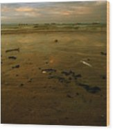 Th Low Tide Wood Print