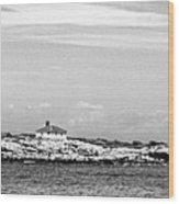 Thacher Island Wood Print