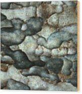Thai Mimosa Wood Print
