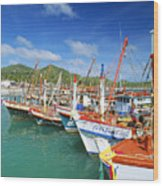 Thailand, Koh Phangan Wood Print