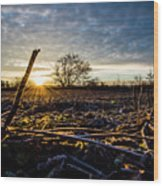 Thanksgiving Sunrise Wood Print