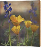 That Golden Poppy Glow  Wood Print