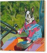 That Is One Hard Workin' Farm Dog Wood Print