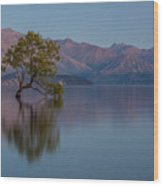That Tree - Wanaka Wood Print