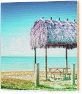 Thatched Roof Hut On Beach Wood Print