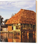 Thatched Roof Placencia Wood Print