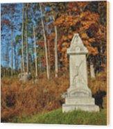 The 5th Ohio Wood Print