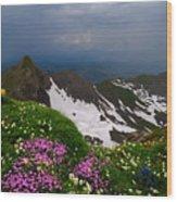 The Alps Wildflowers Wood Print