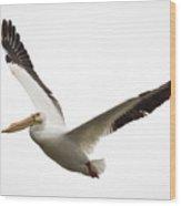 The Amazing American White Pelican Wood Print