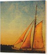 The America Nr 3 Wood Print