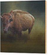 The American Bison Wood Print