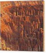 The Amphitheater Wood Print