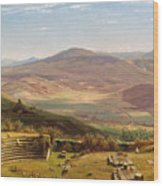 The Amphitheatre Of Tusculum And Albano Mountains. Rome Wood Print
