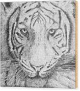 The Amur Tiger Wood Print