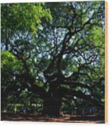 The Angel Oak In Summer Wood Print