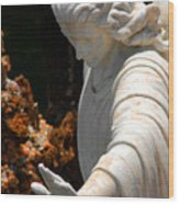 The Angels Warning Wood Print