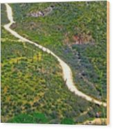 The Apache Trail Wood Print