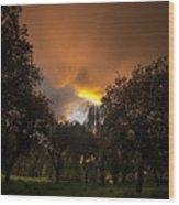 The Apple Trees Wood Print