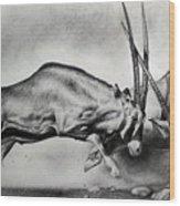 The Arabian Oryx Wood Print