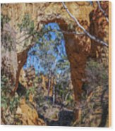 Golden Gully Gold Mine Wood Print