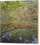 The Arsenic Lake Devon Great Consols Wood Print