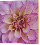 The Art In Flowers 1 Wood Print