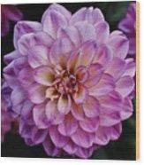 The Art In Flowers 6 Wood Print