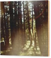 The Art Of The Forest Wood Print