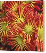 Chrysanthemum Bouquet Wood Print
