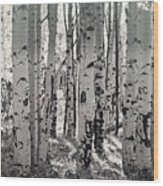 The Aspen Forest In Black And White  Wood Print