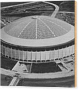 The Astrodome Aka The Eighth Wonder Wood Print by Everett