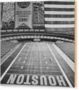 The Astrodome Wood Print