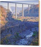 The Atenquique River Passes Under The Highway Bridge Wood Print