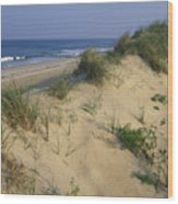The Atlantic Ocean Rolls Wood Print by Stephen Alvarez