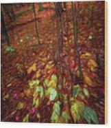 Autumn V6 Wood Print