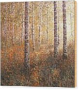 The Autumn Sun In The Birch Forest Wood Print