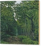 The Avenue Of Chestnut Trees Wood Print