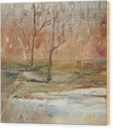 The Back Field Creek Wood Print