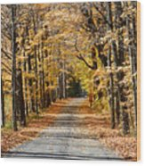 The Back Road In Autumn Wood Print