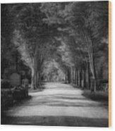 The Backroad Wood Print