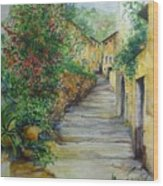 The Balearics Typical Spain Wood Print