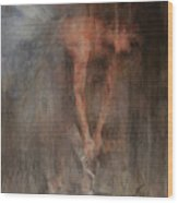 The Ballet Dancer Swan Lake Wood Print by Elisabeth Nussy Denzler von Botha